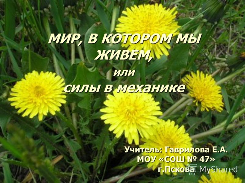11 МИР, В КОТОРОМ МЫ ЖИВЕМ, или силы в механике Учитель: Гаврилова Е.А. МОУ «СОШ 47» г.Пскова