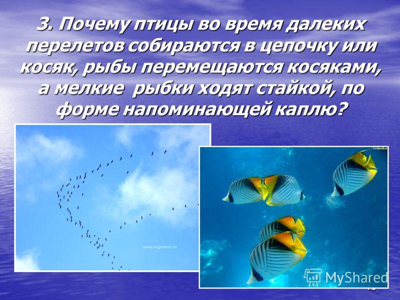 73 3. Почему птицы во время далеких перелетов собираются в цепочку или косяк, рыбы перемещаются косяками, а мелкие рыбки ходят стайкой, по форме напоминающей каплю? 73