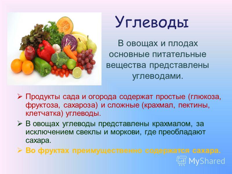 Углеводы Продукты сада и огорода содержат простые (глюкоза, фруктоза, сахароза) и сложные (крахмал, пектины, клетчатка) углеводы. В овощах углеводы представлены крахмалом, за исключением свеклы и моркови, где преобладают сахара. Во фруктах преимущест