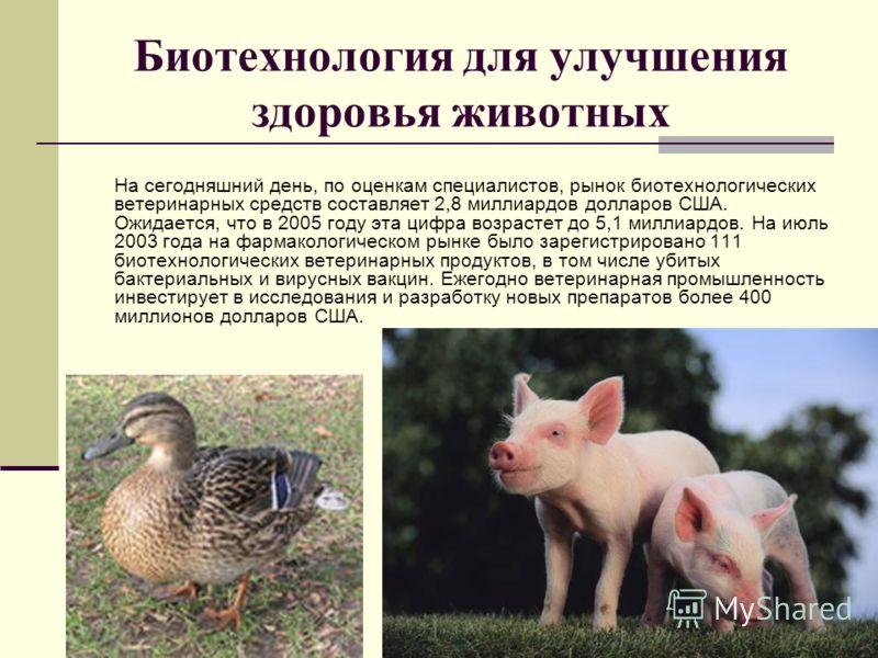 Биотехнология для улучшения здоровья животных На сегодняшний день, по оценкам специалистов, рынок биотехнологических ветеринарных средств составляет 2,8 миллиардов долларов США. Ожидается, что в 2005 году эта цифра возрастет до 5,1 миллиардов. На июл
