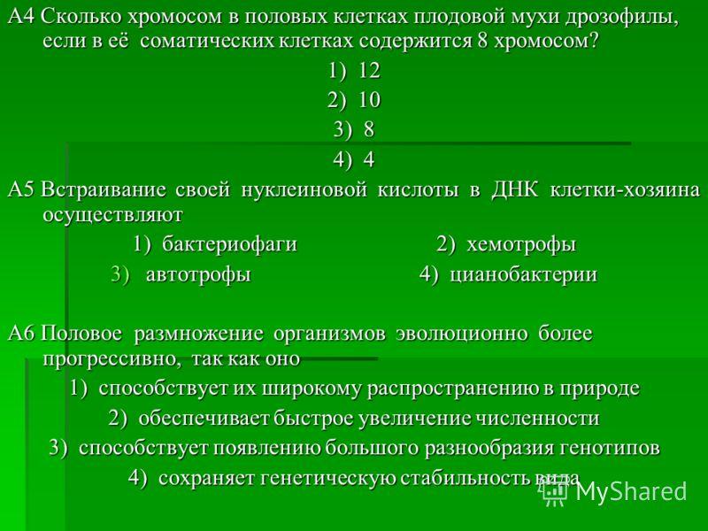 A4 Сколько хромосом в половых клетках плодовой мухи дрозофилы, если в её соматических клетках содержится 8 хромосом? 1) 12 2) 10 3) 8 4) 4 A5 Встраивание своей нуклеиновой кислоты в ДНК клетки-хозяина осуществляют 1) бактериофаги 2) хемотрофы 3)автот