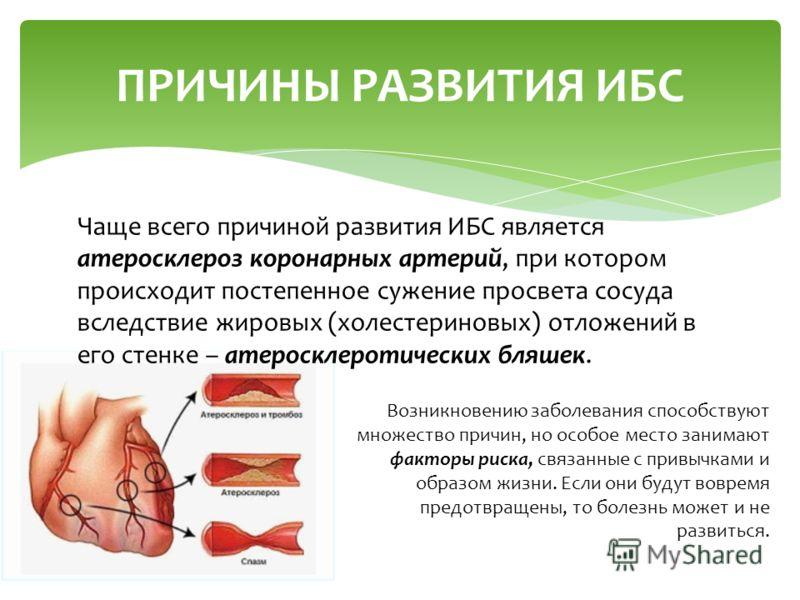 ПРИЧИНЫ РАЗВИТИЯ ИБС Чаще всего причиной развития ИБС является атеросклероз коронарных артерий, при котором происходит постепенное сужение просвета сосуда вследствие жировых (холестериновых) отложений в его стенке – атеросклеротических бляшек. Возник