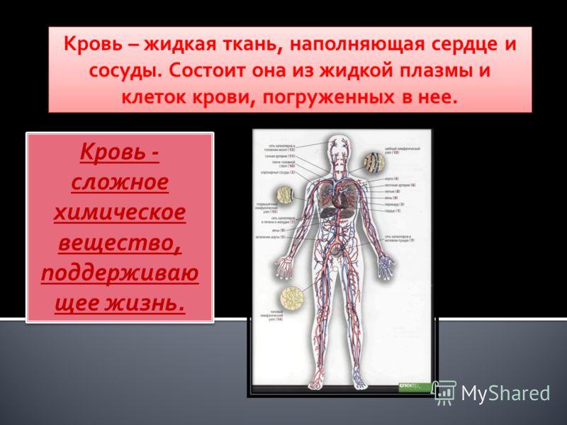 Кровь – жидкая ткань, наполняющая сердце и сосуды. Состоит она из жидкой плазмы и клеток крови, погруженных в нее. Кровь - сложное химическое вещество, поддерживаю щее жизнь.