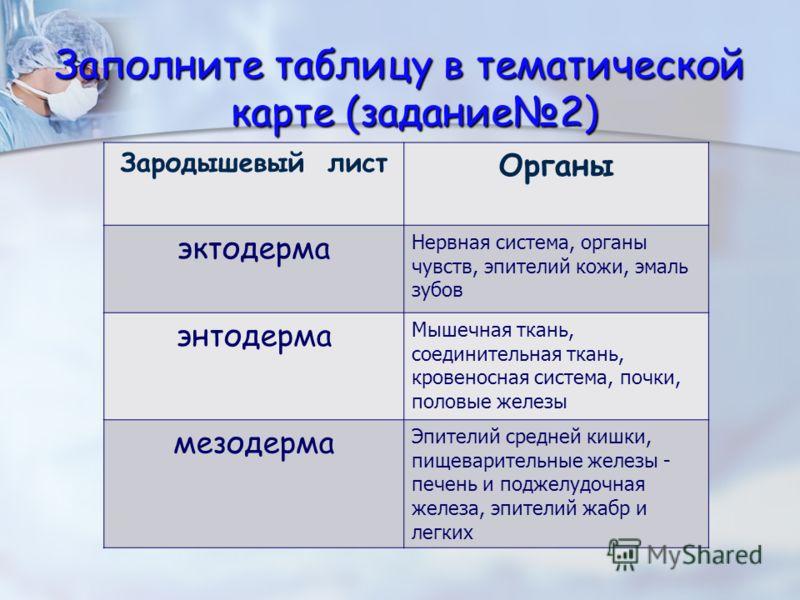 Заполните таблицу в тематической карте (задание2) Зародышевый лист Органы эктодерма Нервная система, органы чувств, эпителий кожи, эмаль зубов энтодерма Мышечная ткань, соединительная ткань, кровеносная система, почки, половые железы мезодерма Эпител