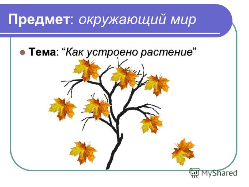 Предмет: окружающий мир Тема: Как устроено растение Тема: Как устроено растение