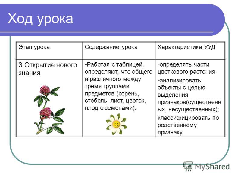 Ход урока Этап урокаСодержание урокаХарактеристика УУД 3.Открытие нового знания -Работая с таблицей, определяют, что общего и различного между тремя группами предметов (корень, стебель, лист, цветок, плод с семенами). -определять части цветкового рас