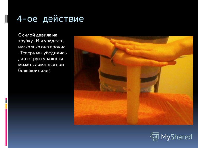 4-ое действие С силой давила на трубку. И я увидела, насколько она прочна. Теперь мы убедились, что структура кости может сломаться при большой силе !