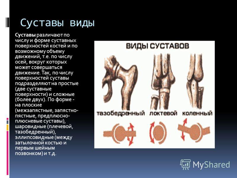 Суставы виды Суставы различают по числу и форме суставных поверхностей костей и по возможному объему движений, т.е. по числу осей, вокруг которых может совершаться движение. Так, по числу поверхностей суставы подразделяют на простые (две суставные по