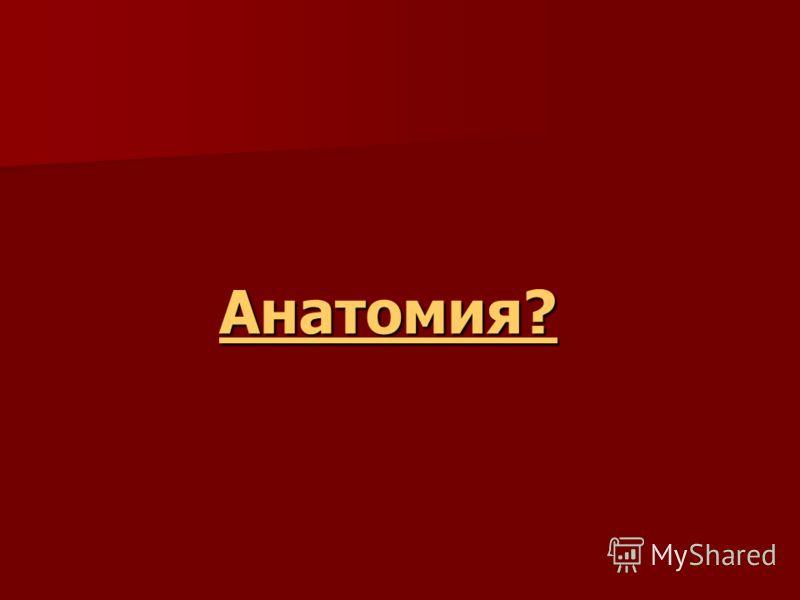 Анатомия?