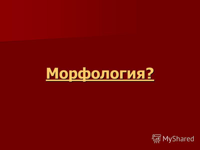 Морфология?