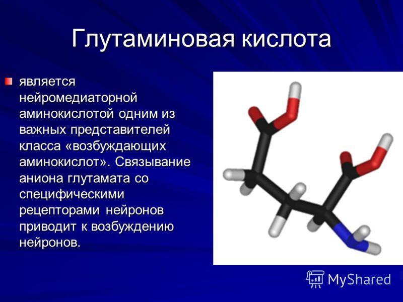 Глутаминовая кислота является нейромедиаторной аминокислотой одним из важных представителей класса «возбуждающих аминокислот». Связывание аниона глутамата со специфическими рецепторами нейронов приводит к возбуждению нейронов.