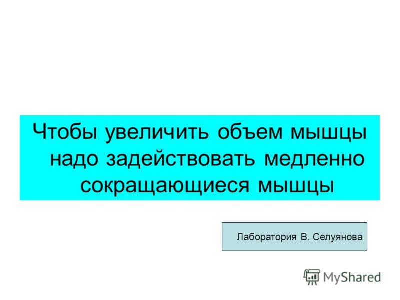 Чтобы увеличить объем мышцы надо задействовать медленно сокращающиеся мышцы Лаборатория В. Селуянова