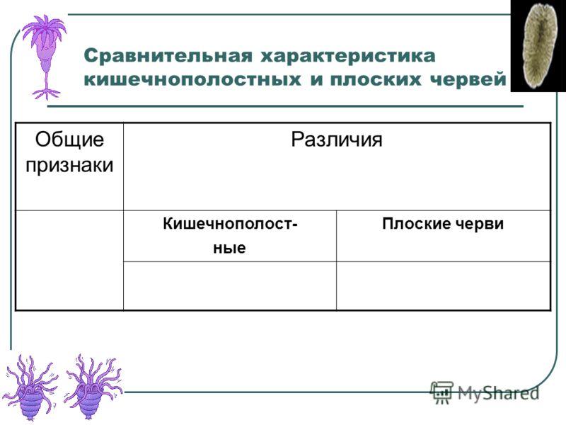 Сравнительная характеристика кишечнополостных и плоских червей Общие признаки Различия Кишечнополост- ные Плоские черви