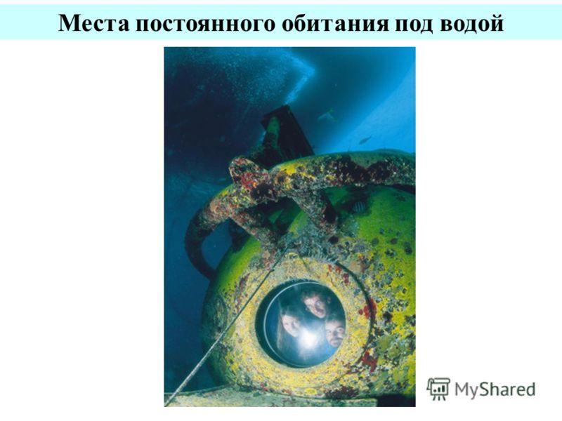Места постоянного обитания под водой