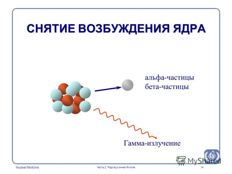 Nuclear Medicine 14 альфа-частицы бета-частицы Гамма-излучение СНЯТИЕ ВОЗБУЖДЕНИЯ ЯДРА Часть 2: Радиационная Физика