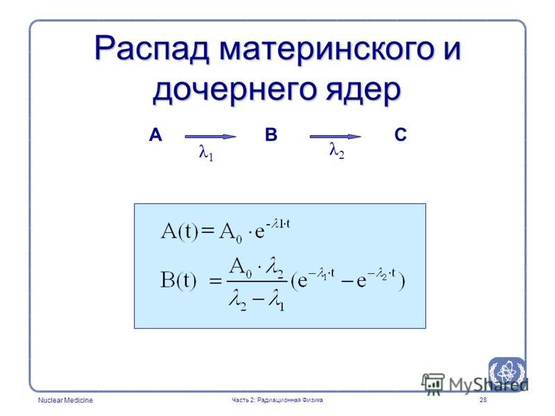 Nuclear Medicine 28 Распад материнского и дочернего ядер ACB λ1λ1 λ2λ2 Часть 2: Радиационная Физика