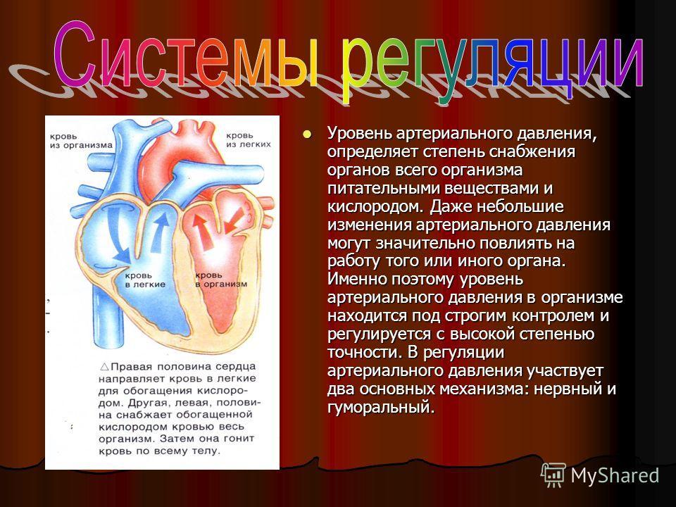 Уровень артериального давления, определяет степень снабжения органов всего организма питательными веществами и кислородом. Даже небольшие изменения артериального давления могут значительно повлиять на работу того или иного органа. Именно поэтому уров