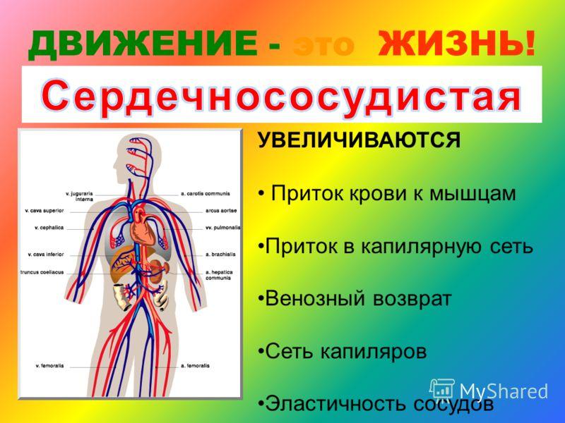 УВЕЛИЧИВАЮТСЯ: растяжимость грудной клетки и легких сила и выносливость дыхательных мышц Диффузионная способность легких ДВИЖЕНИЕ - это ЖИЗНЬ!