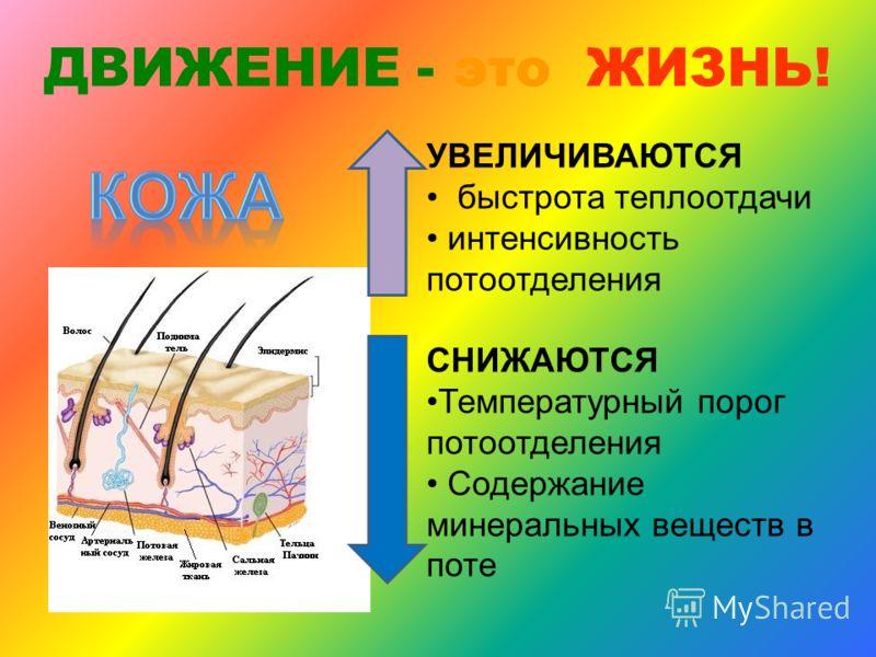 ДВИЖЕНИЕ - это ЖИЗНЬ! Эритр. 5 млн [4,5] 6 млн [5] Гемоглобин, г/л 140-150 [120-130] 160-170 [150-160] Мол. кислота 0,5- 1,5 [1-2] 25-30 [15]