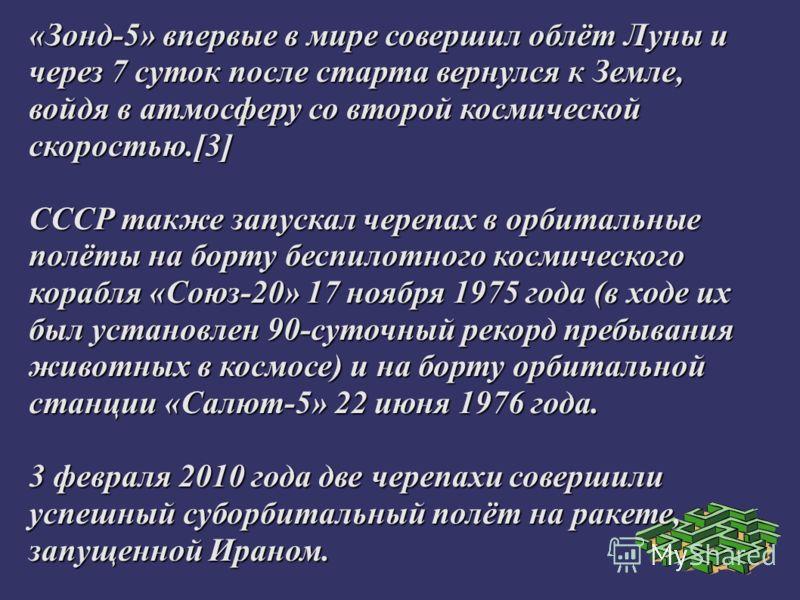 Черепах извлекли из спускаемого аппарата уже в Москве, в цеху ЦКБЭМ, и передали их в распоряжение учёных. Полёт был перенесён черепахами нормально, но по некоторым данным у одной из них из-за перегрузки, достигавшей при приземлении 20 единиц, вылез и