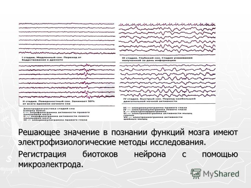 Решающее значение в познании функций мозга имеют электрофизиологические методы исследования. Регистрация биотоков нейрона с помощью микроэлектрода.