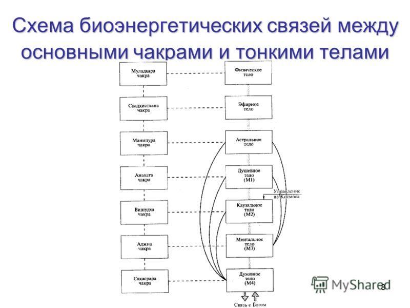 8 Схема биоэнергетических связей между основными чакрами и тонкими телами