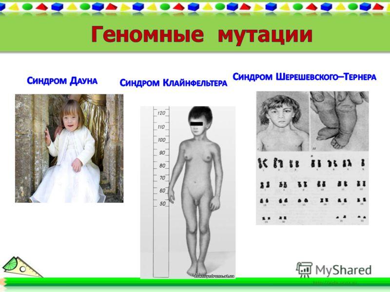 Геномными называют мутации, приводящие к изменению числа хромосом.