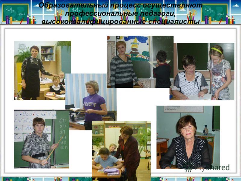 Образовательный процесс осуществляют профессиональные педагоги, высококвалифицированные специалисты