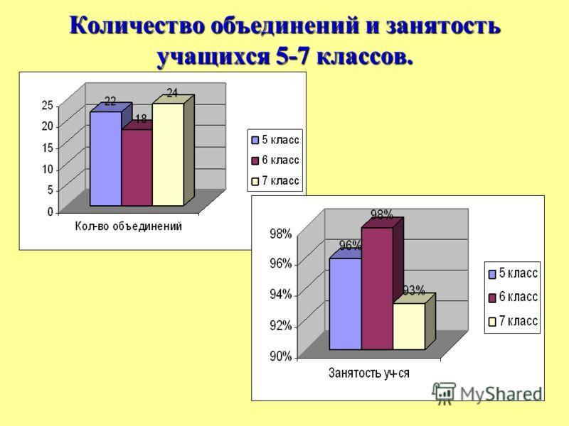 Количество объединений и занятость учащихся 5-7 классов.