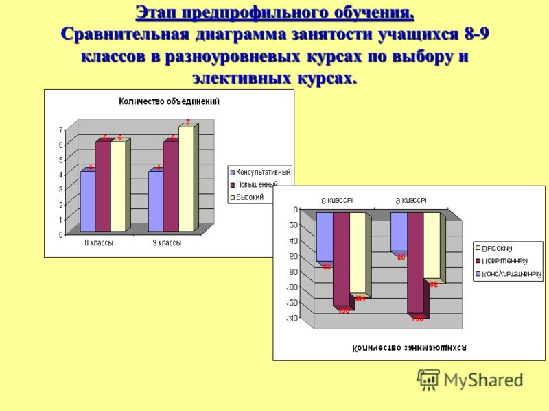Этап предпрофильного обучения. Сравнительная диаграмма занятости учащихся 8-9 классов в разноуровневых курсах по выбору и элективных курсах.