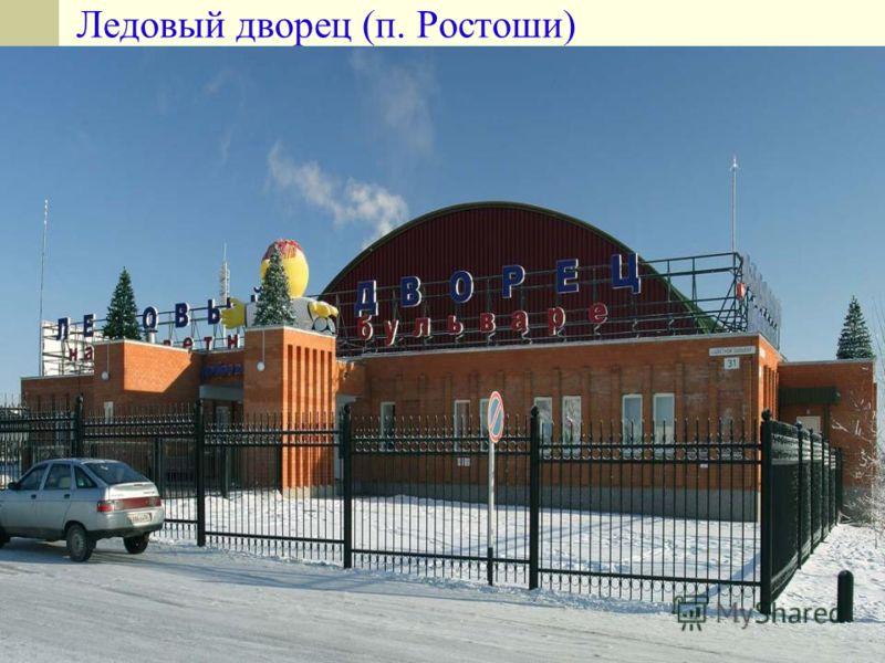 33 Ледовый дворец (п. Ростоши)