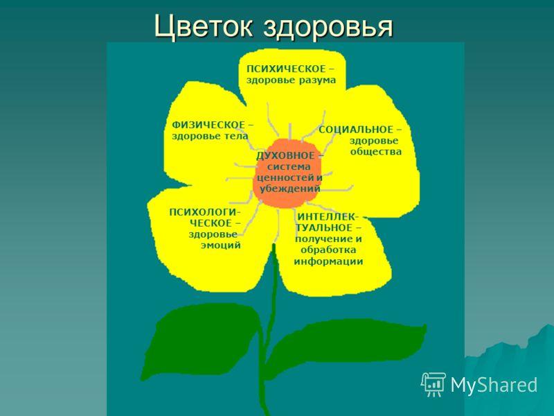 Цветок здоровья ПСИХИЧЕСКОЕ – здоровье разума ФИЗИЧЕСКОЕ – здоровье тела СОЦИАЛЬНОЕ – здоровье общества ПСИХОЛОГИ- ЧЕСКОЕ – здоровье эмоций ИНТЕЛЛЕК-