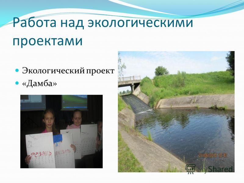 Работа над экологическими проектами Экологический проект «Дамба»