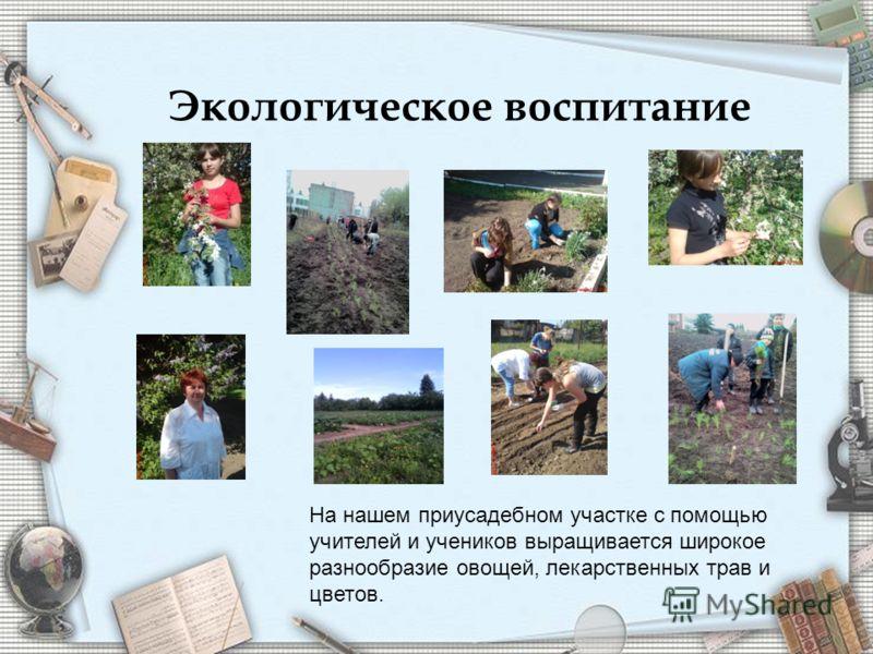 Экологическое воспитание На нашем приусадебном участке с помощью учителей и учеников выращивается широкое разнообразие овощей, лекарственных трав и цветов.