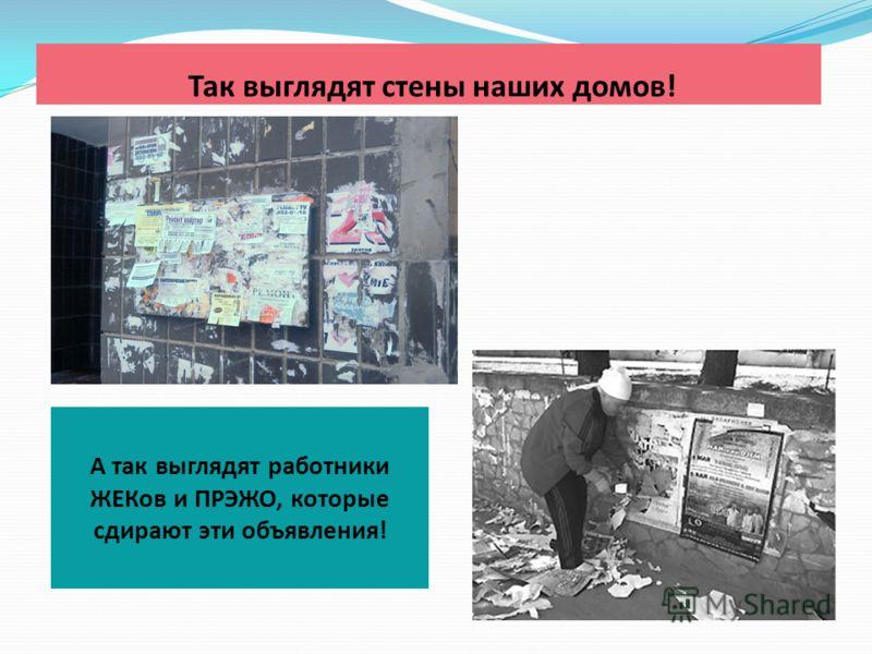 Так выглядят стены наших домов! А так выглядят работники ЖЕКов и ПРЭЖО, которые сдирают эти объявления!