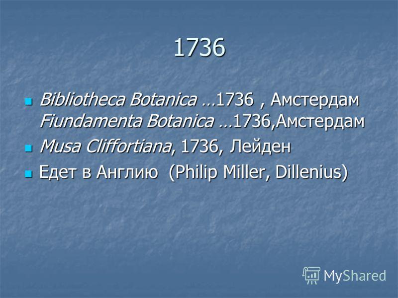 1736 Bibliotheca Botanica …1736, Aмстердам Fiundamenta Botanica …1736,Aмстердам Bibliotheca Botanica …1736, Aмстердам Fiundamenta Botanica …1736,Aмстердам Musa Cliffortiana, 1736, Лейден Musa Cliffortiana, 1736, Лейден Едет в Англию (Philip Miller, D