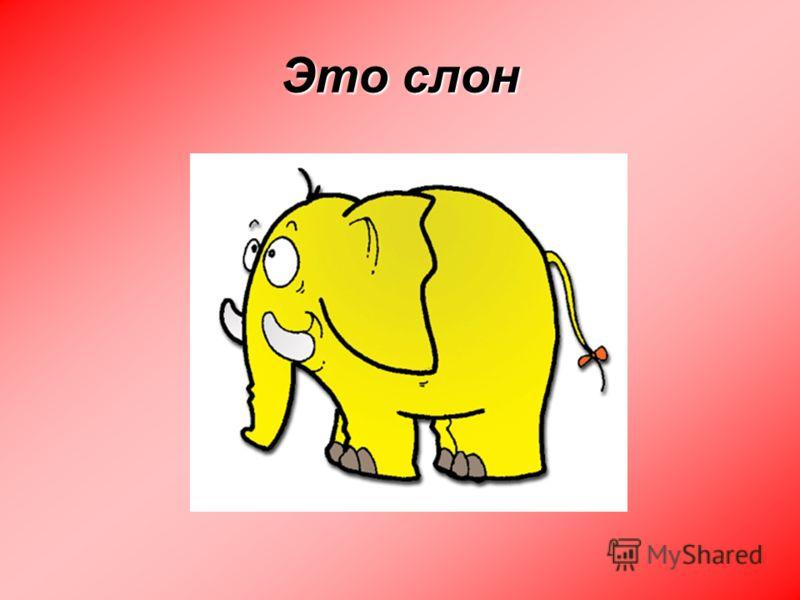 Это слон