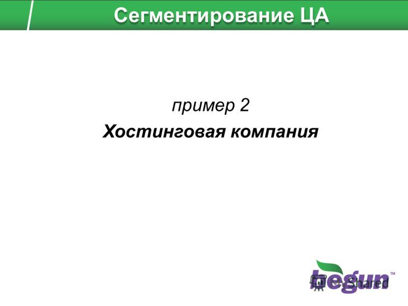 пример 2 Хостинговая компания Сегментирование ЦА