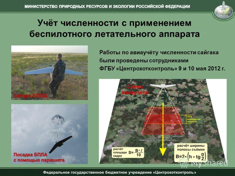 Учёт численности с применением беспилотного летательного аппарата Работы по авиаучёту численности сайгака были проведены сотрудниками ФГБУ «Центрохотконтроль» 9 и 10 мая 2012 г.