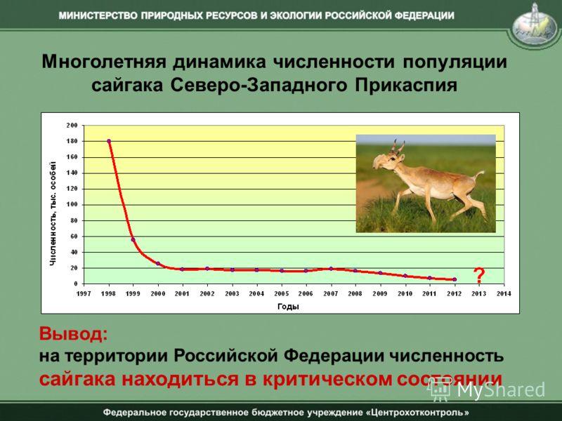 Многолетняя динамика численности популяции сайгака Северо-Западного Прикаспия Вывод: на территории Российской Федерации численность сайгака находиться в критическом состоянии
