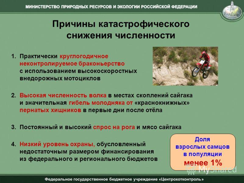 Причины катастрофического снижения численности 1. Практически круглогодичное неконтролируемое браконьерство с использованием высокоскоростных внедорожных мотоциклов 2. Высокая численность волка в местах скоплений сайгака и значительная гибель молодня