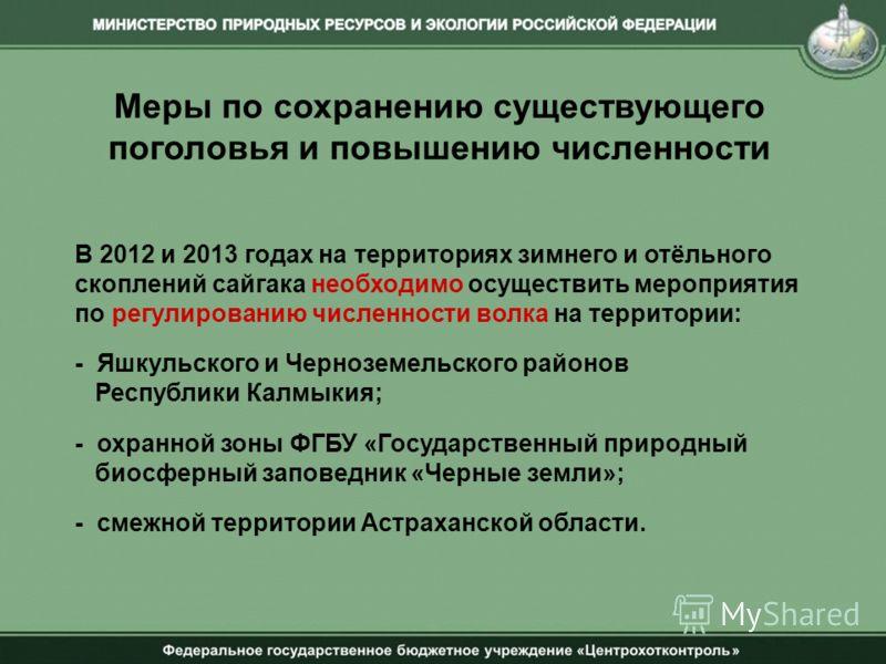 Меры по сохранению существующего поголовья и повышению численности В 2012 и 2013 годах на территориях зимнего и отёльного скоплений сайгака необходимо осуществить мероприятия по регулированию численности волка на территории: - Яшкульского и Черноземе