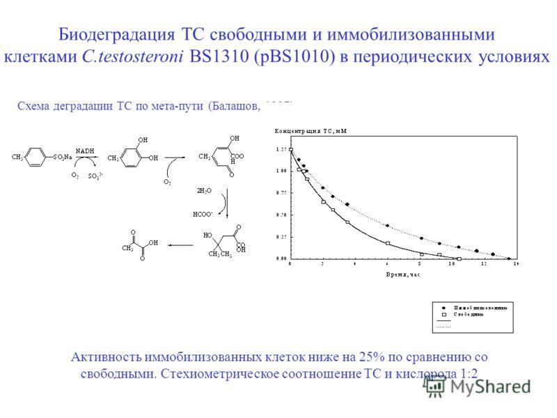 Биодеградация ТС свободными и иммобилизованными клетками C.testosteroni BS1310 (pBS1010) в периодических условиях Активность иммобилизованных клеток ниже на 25% по сравнению со свободными. Стехиометрическое соотношение ТС и кислорода 1:2 Схема деград
