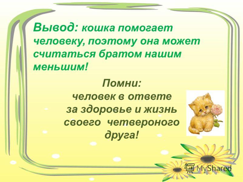 Вывод: кошка помогает человеку, поэтому она может считаться братом нашим меньшим! Помни: человек в ответе за здоровье и жизнь своего четвероного друга!