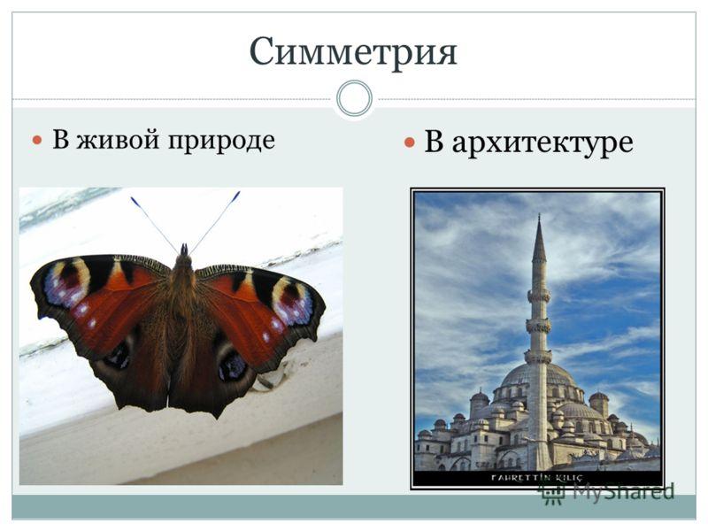 Симметрия В живой природе В архитектуре