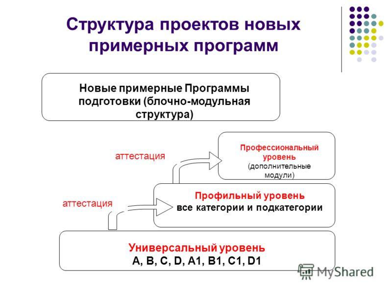 Структура проектов новых примерных программ Универсальный уровень А, В, С, D, А1, В1, С1, D1 Профильный уровень все категории и подкатегории Профессиональный уровень (дополнительные модули) аттестация Новые примерные Программы подготовки (блочно-моду