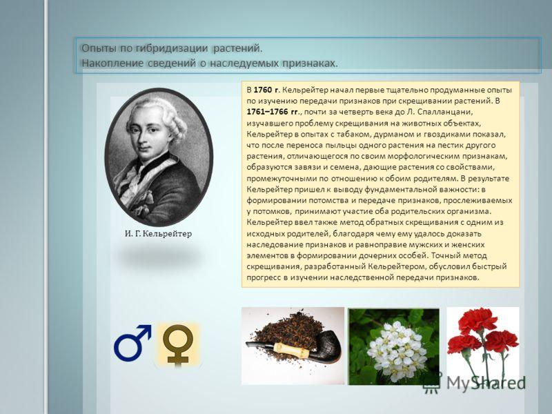 Опыты по гибридизации растений. Накопление сведений о наследуемых признаках. Опыты по гибридизации растений. Накопление сведений о наследуемых признаках. Аристотель И. Г. Кельрейтер В 1760 г. Кельрейтер начал первые тщательно продуманные опыты по изу