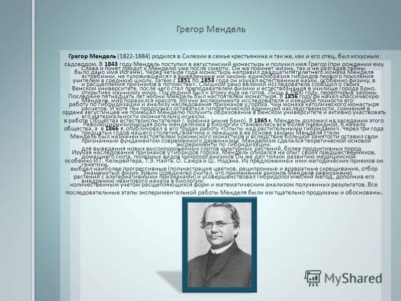 Аристотель Грегор Мендель Грегор Мендель (1822-1884) родился в Силезии в семье крестьянина и так же, как и его отец, был искусным садоводом. В 1843 году Мендель поступил в августинский монастырь и получил имя Грегор (при рождении ему было дано имя Ио