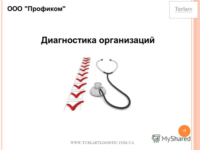 WWW. TURLAEVLOGISTIC. COM. UA 1 Диагностика организаций ООО Профиком