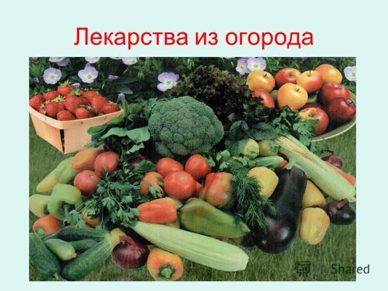 Лекарства из огорода